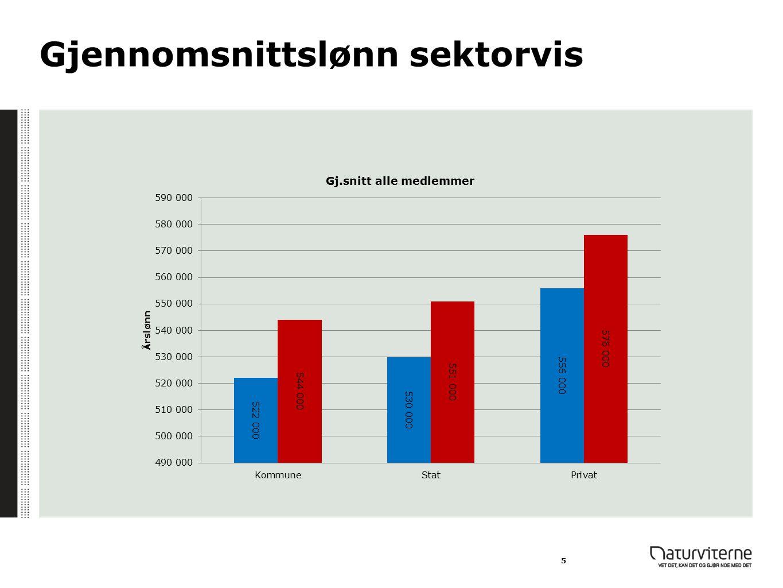 Gjennomsnittslønn sektorvis 5