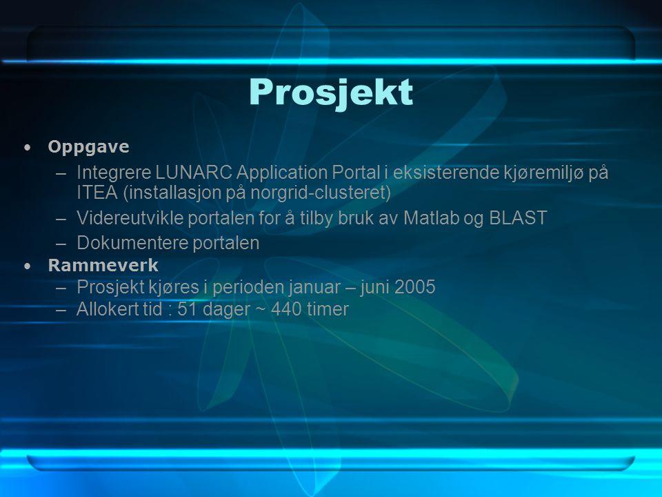 Prosjekt Oppgave –Integrere LUNARC Application Portal i eksisterende kjøremiljø på ITEA (installasjon på norgrid-clusteret) –Videreutvikle portalen for å tilby bruk av Matlab og BLAST –Dokumentere portalen Rammeverk –Prosjekt kjøres i perioden januar – juni 2005 –Allokert tid : 51 dager ~ 440 timer