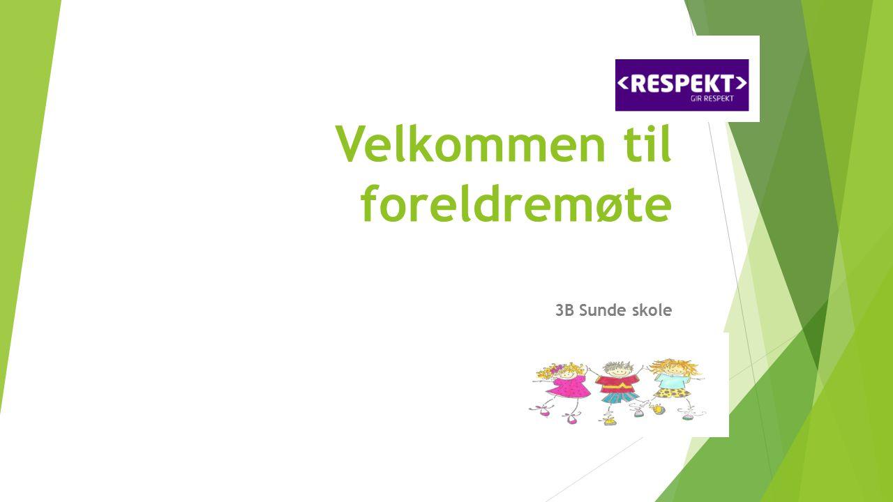 Agenda:  Presentasjon  Praktisk info  Timeplan  Valg Vara klassekontakter for 4.