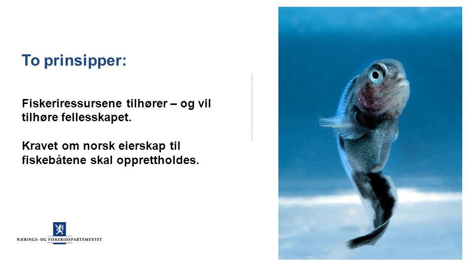 To prinsipper: Fiskeriressursene tilhører – og vil tilhøre fellesskapet. Kravet om norsk eierskap til fiskebåtene skal opprettholdes.