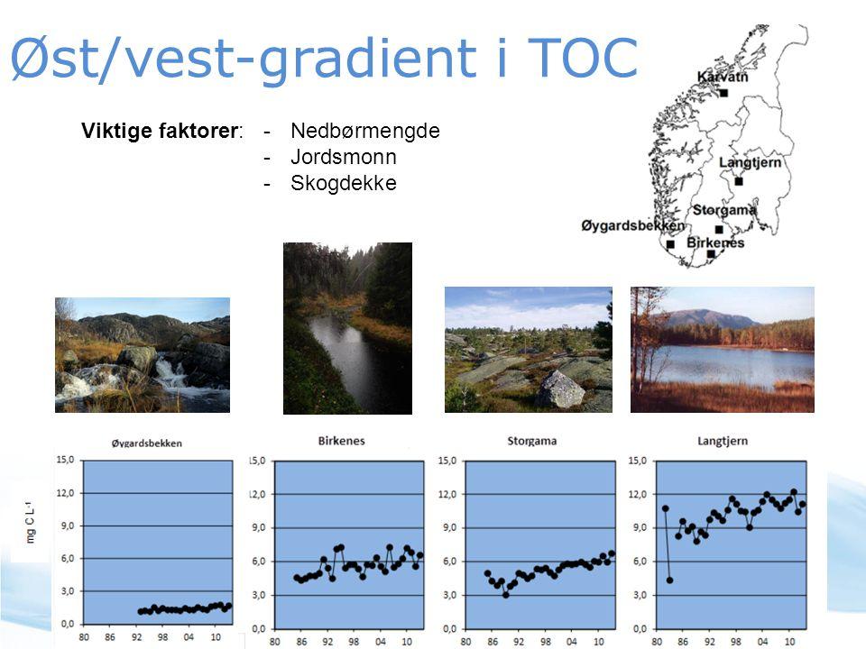 Øst/vest-gradient i TOC Viktige faktorer: -Nedbørmengde -Jordsmonn -Skogdekke