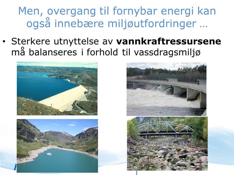 Men, overgang til fornybar energi kan også innebære miljøutfordringer … Sterkere utnyttelse av vannkraftressursene må balanseres i forhold til vassdra