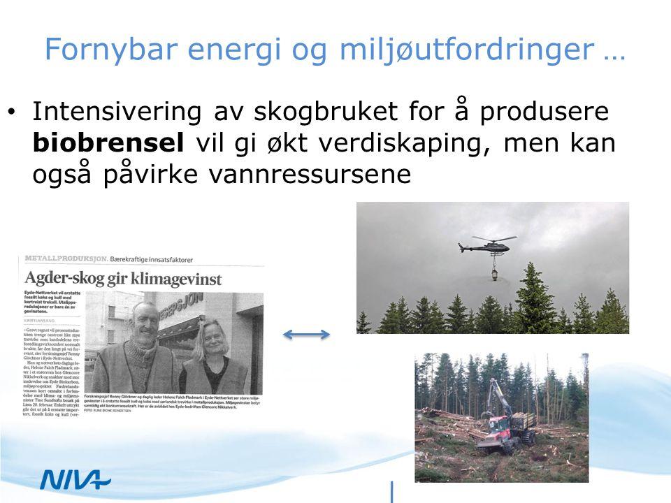Fornybar energi og miljøutfordringer … Intensivering av skogbruket for å produsere biobrensel vil gi økt verdiskaping, men kan også påvirke vannressur