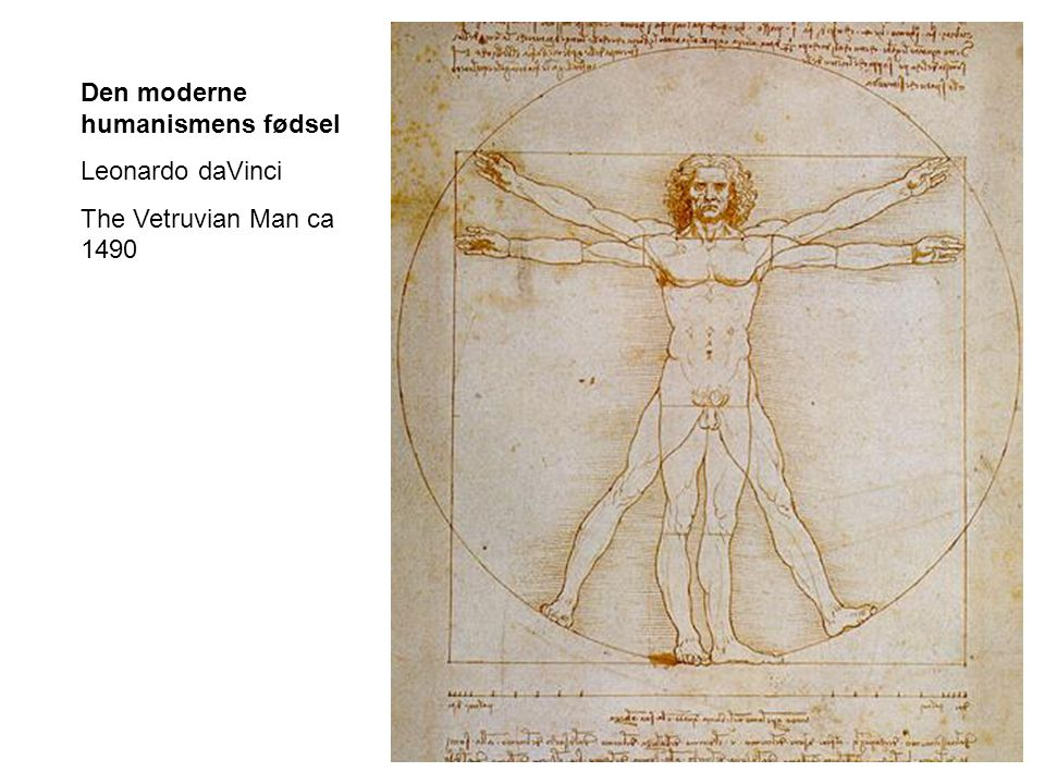 Den moderne humanismens fødsel Leonardo daVinci The Vetruvian Man ca 1490
