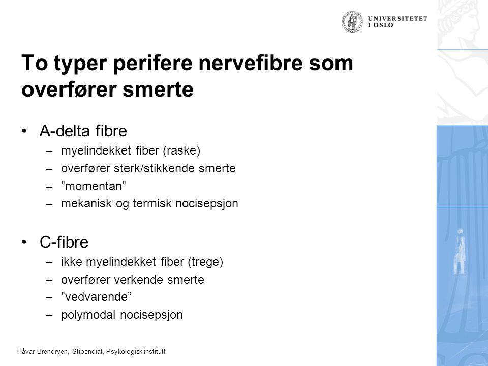 Håvar Brendryen, Stipendiat, Psykologisk institutt To typer perifere nervefibre som overfører smerte A-delta fibre –myelindekket fiber (raske) –overfø