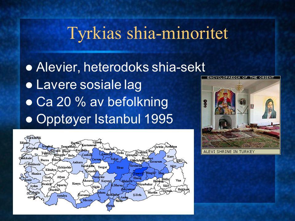 Tyrkias shia-minoritet Alevier, heterodoks shia-sekt Lavere sosiale lag Ca 20 % av befolkning Opptøyer Istanbul 1995