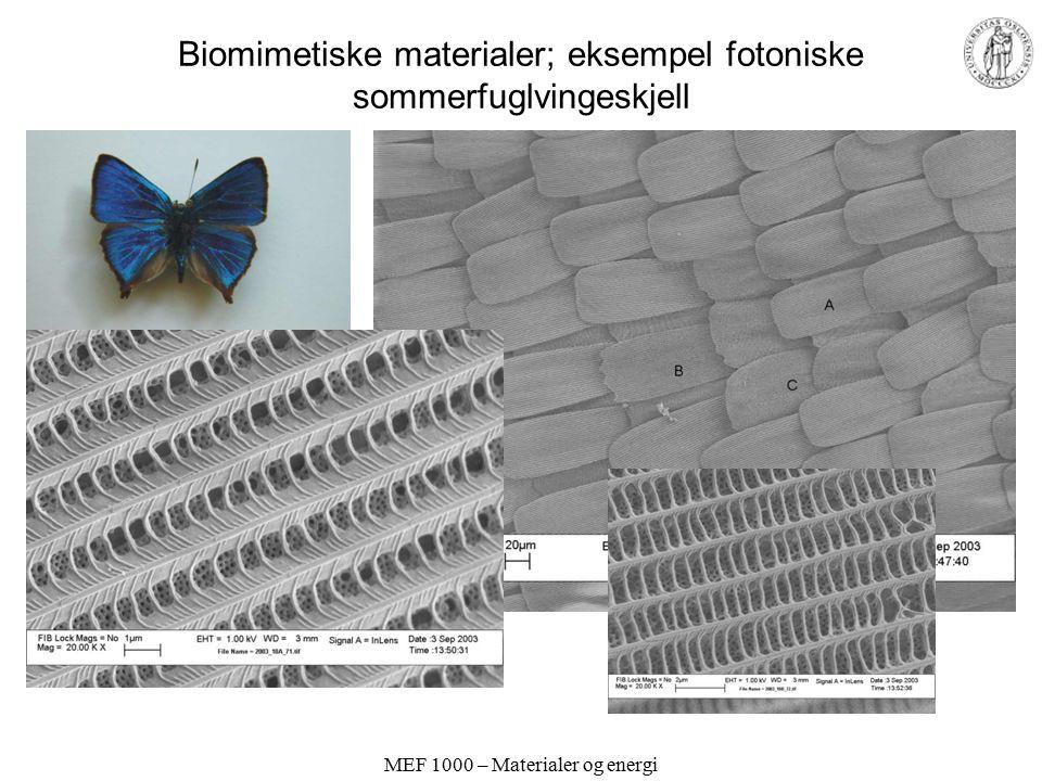 MEF 1000 – Materialer og energi Biomimetiske materialer; eksempel fotoniske sommerfuglvingeskjell