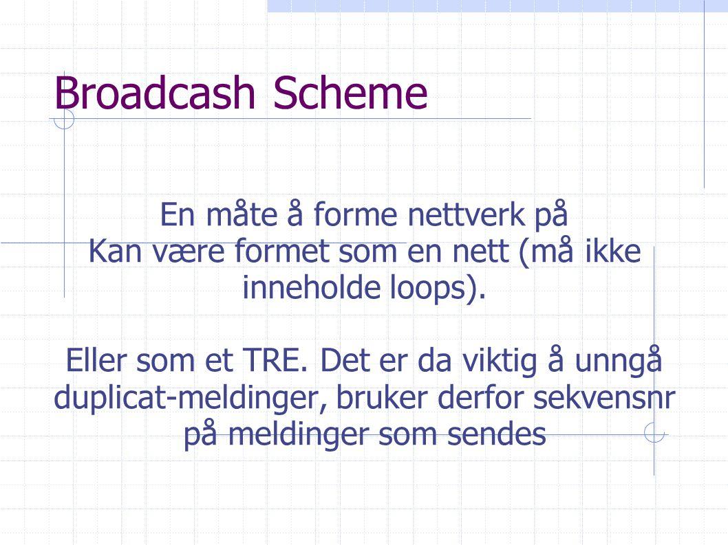 Broadcash Scheme En måte å forme nettverk på Kan være formet som en nett (må ikke inneholde loops).