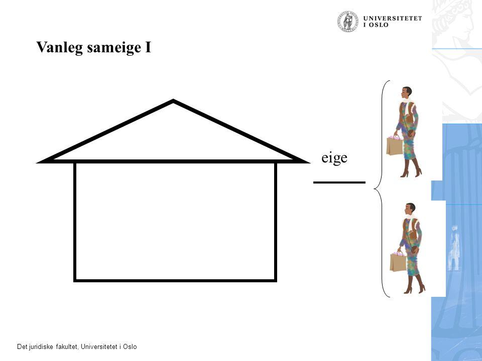 Det juridiske fakultet, Universitetet i Oslo Husleigeavtalen Plikter for utleigaren –stille husrom til disposisjon –halde husrommet ved like Plikter for leigaren –betale leige –fara fint med husrommet, halde det ved like