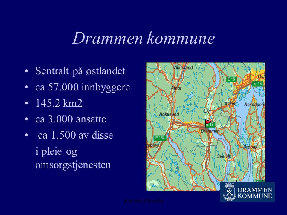Åse Sørli Westby Drammen kommune Erfaringer med håndholdte enheter To historier, en slutt og minst en fortsettelse.. ?