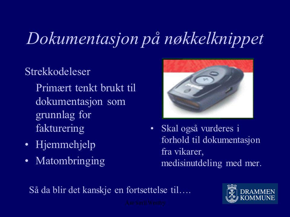 Åse Sørli Westby 2004 – hjemmesykepleie og pda 13.09.2004 En avdeling i hjemmesykepleien i Fjell bydel går i pilot- drift. 20.09.2004 En avdeling i hj