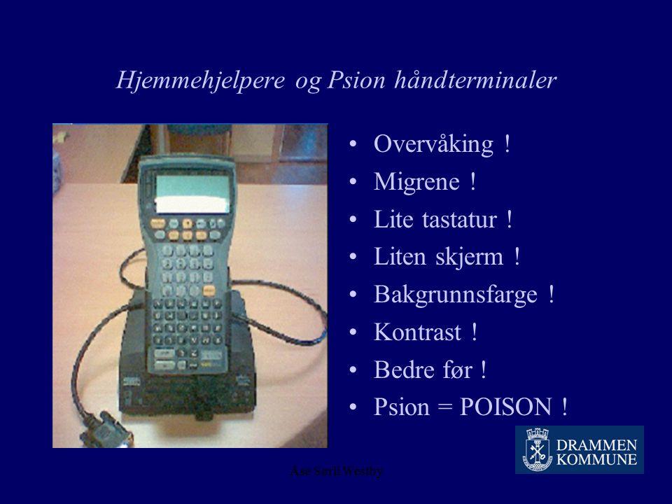 Åse Sørli Westby Hjemmehjelpere og Psion håndterminaler Store datamengder Nettverk Tåke i Drammen..! Regn i Drammen..! Dueskitt i antenna.. Bugs.. She