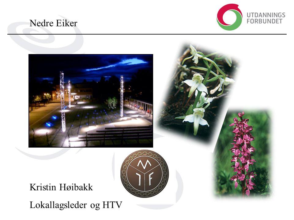 Nedre Eiker Kristin Høibakk Lokallagsleder og HTV