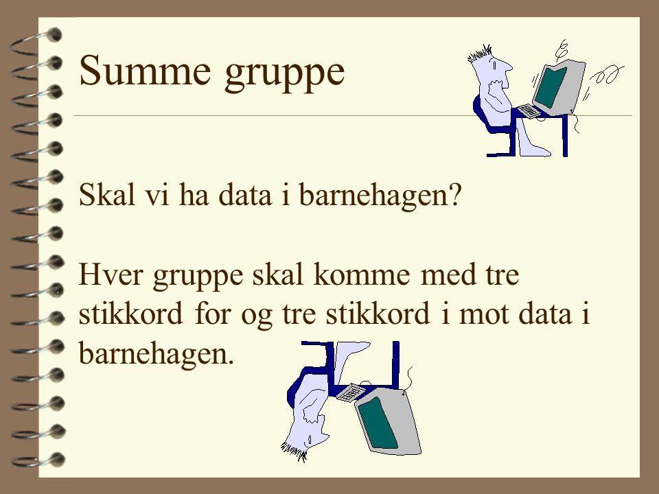 Summe gruppe Skal vi ha data i barnehagen.