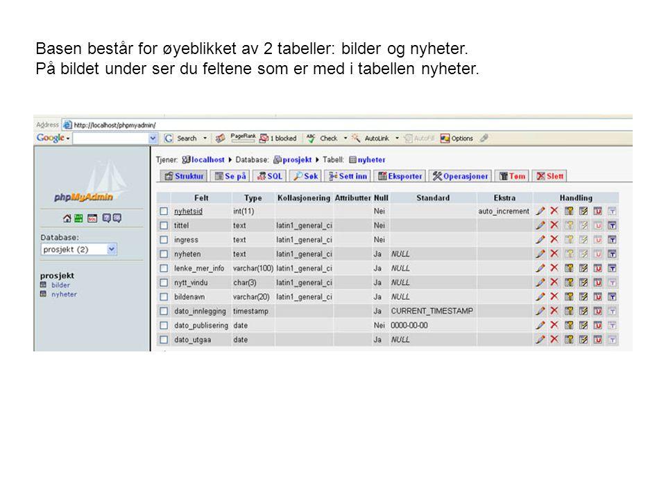 Basen består for øyeblikket av 2 tabeller: bilder og nyheter. På bildet under ser du feltene som er med i tabellen nyheter.