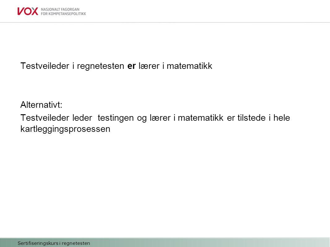 Informere Motivere Organisere testingen Vurdere hvem som skal testes Kan bruke pc Norskferdigheter på B1-nivå Sertifiseringskurs i regnetesten Oppstart