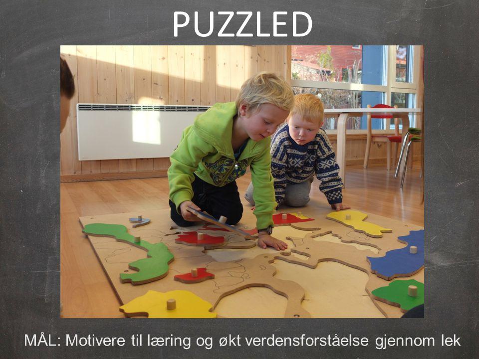 PUZZLED MÅL: Motivere til læring og økt verdensforståelse gjennom lek