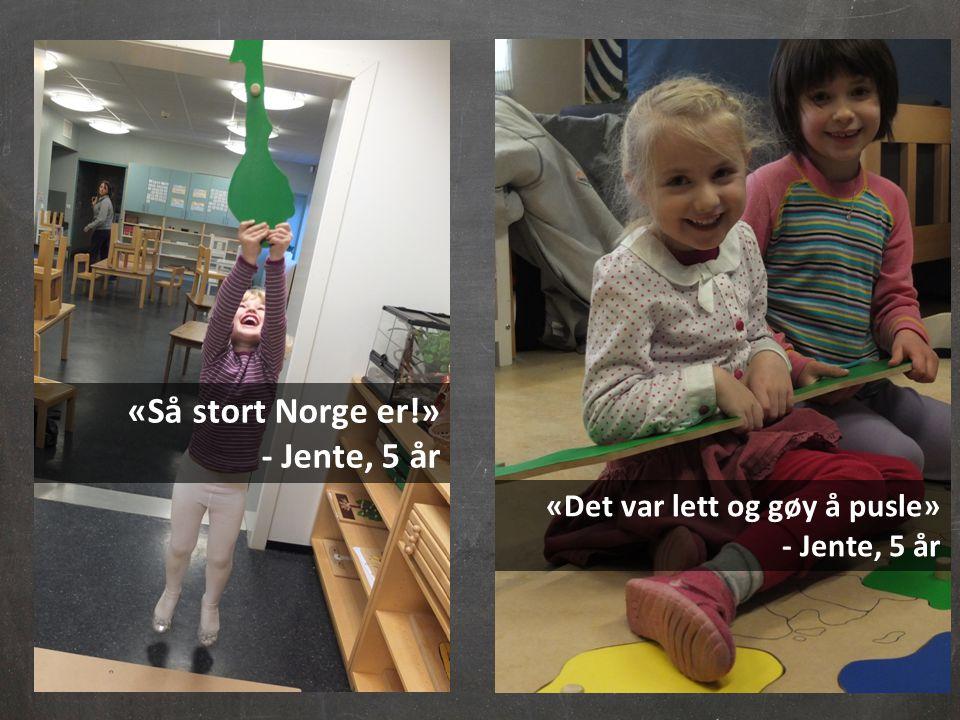 «Så stort Norge er!» - Jente, 5 år «Det var lett og gøy å pusle» - Jente, 5 år
