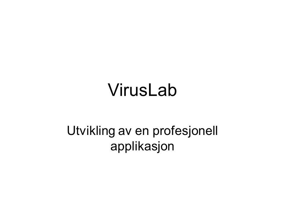 VirusLab Utvikling av en profesjonell applikasjon