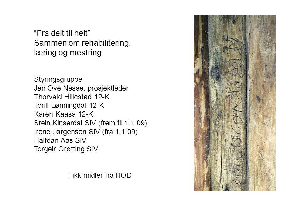 """""""Fra delt til helt"""" Sammen om rehabilitering, læring og mestring Styringsgruppe Jan Ove Nesse, prosjektleder Thorvald Hillestad 12-K Torill Lønningdal"""