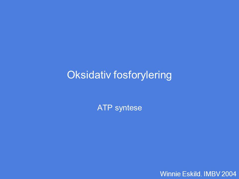 Oksidativ fosforylering er siste trinn i nedbrytning av energigivende forbindelser Elektroner fra –Glykolyse –Beta-oksidasjon –Sitronsyre syklus Elektronene bæres av NADH eller FADH2 Elektronene avslutter sin vandring gjennom elektrontransportkjeden med å redusere oksygen