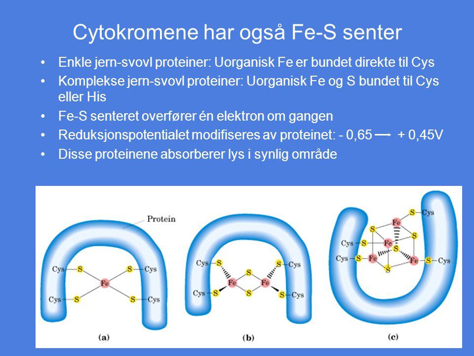 Cytokromene har også Fe-S senter Enkle jern-svovl proteiner: Uorganisk Fe er bundet direkte til Cys Komplekse jern-svovl proteiner: Uorganisk Fe og S
