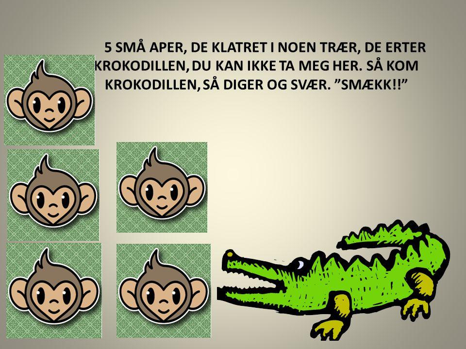 """5 SMÅ APER, DE KLATRET I NOEN TRÆR, DE ERTER KROKODILLEN, DU KAN IKKE TA MEG HER. SÅ KOM KROKODILLEN, SÅ DIGER OG SVÆR. """"SMÆKK!!"""""""