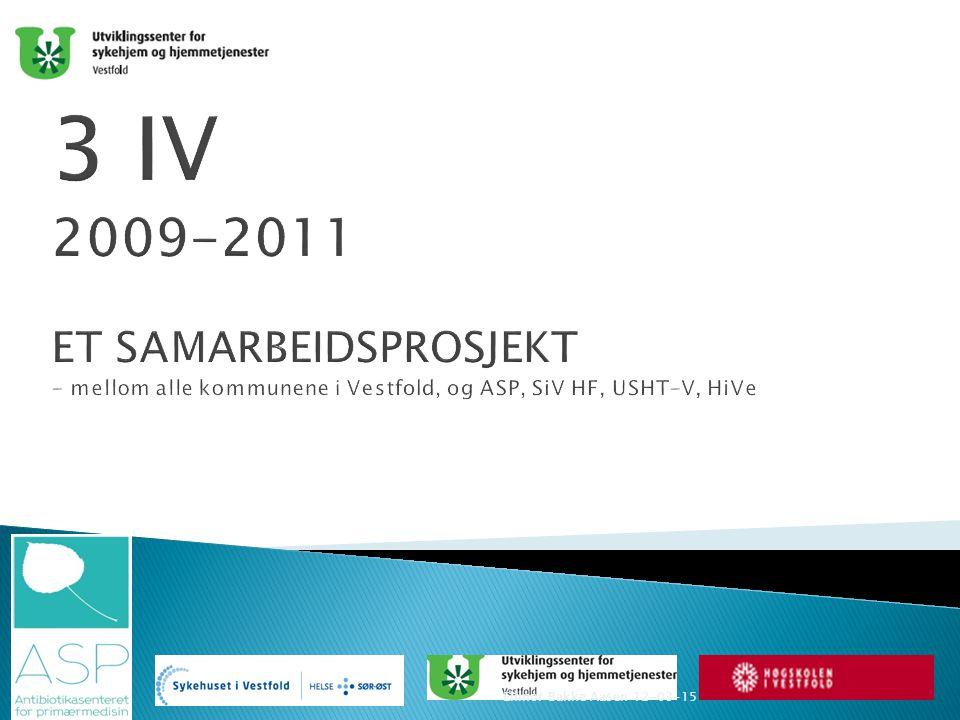 Prosjektet Startet som et kompetansehevingsprosjekt i 2009 etter idè fra Lisbeth Østby i Telemark.