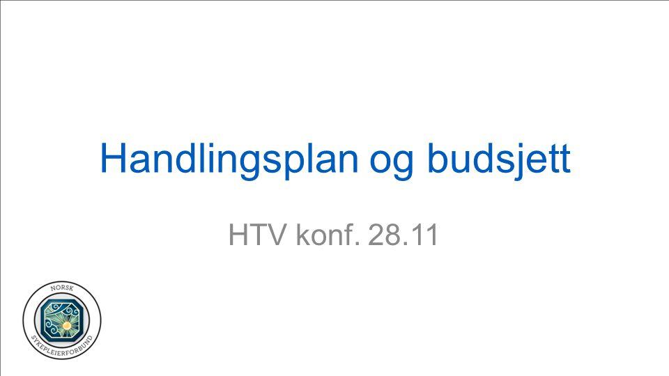 Handlingsplan og budsjett HTV konf. 28.11