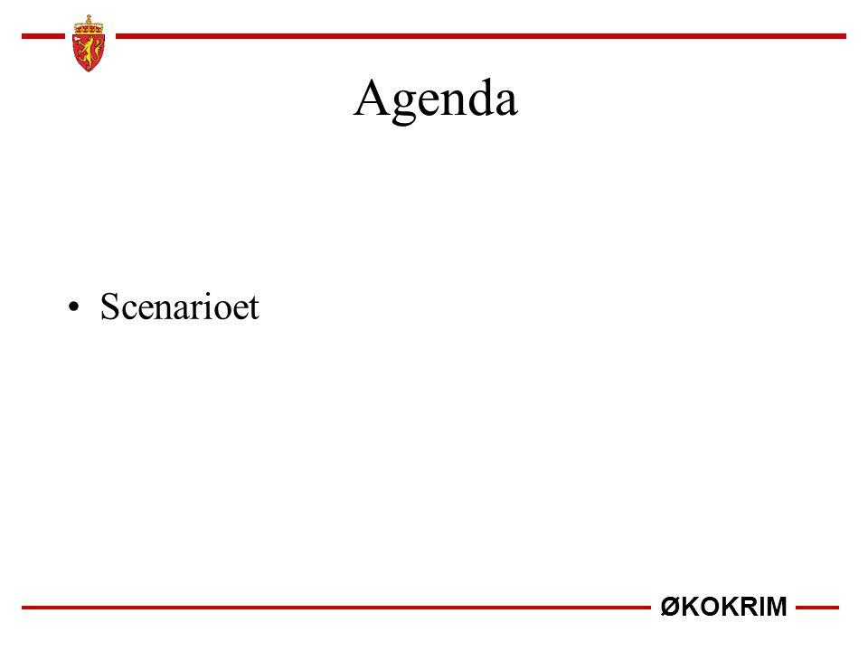 ØKOKRIM Scenarioet Agenda