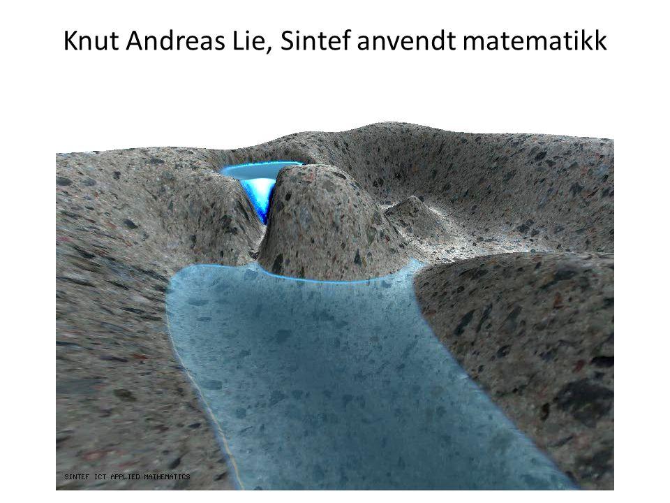 Knut Andreas Lie, Sintef anvendt matematikk