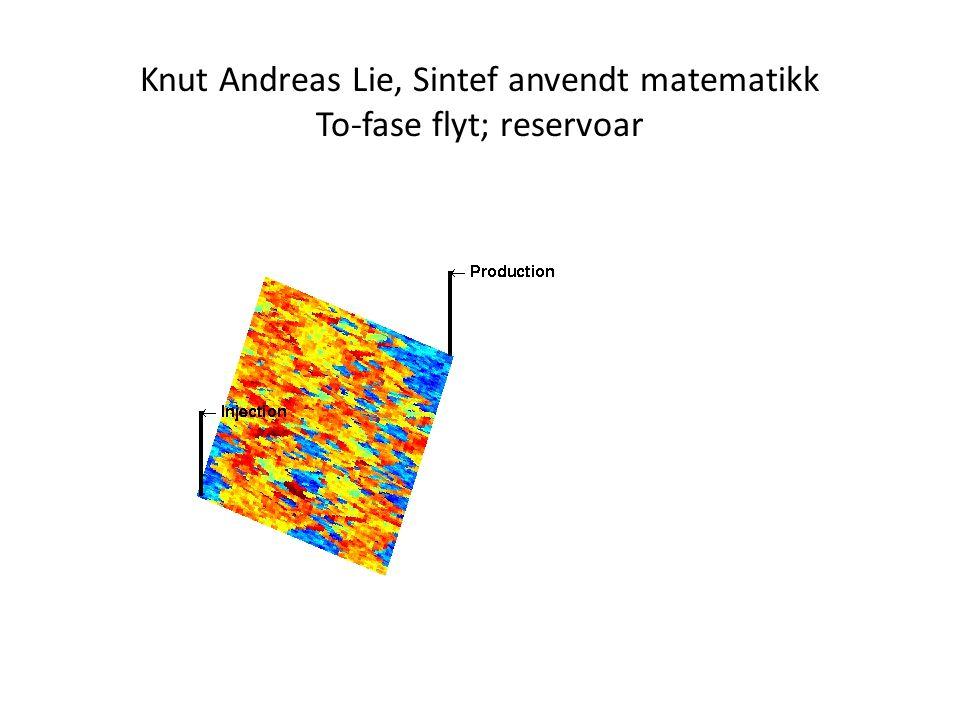 Knut Andreas Lie, Sintef anvendt matematikk To-fase flyt; reservoar