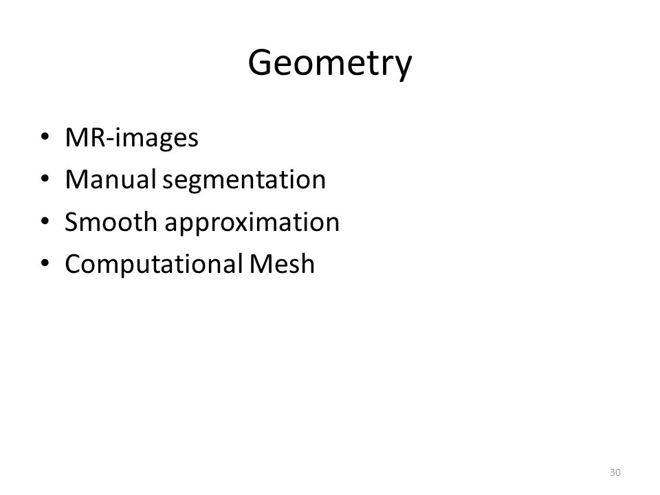 30 Geometry MR-images Manual segmentation Smooth approximation Computational Mesh
