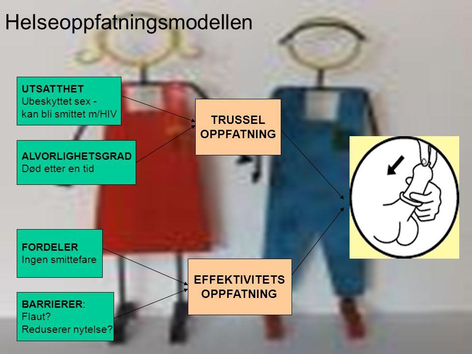 Håvar Brendryen, Stipendiat, Psykologisk institutt HAPA! TPA! klø litt lenger ned TTM! hmm ?