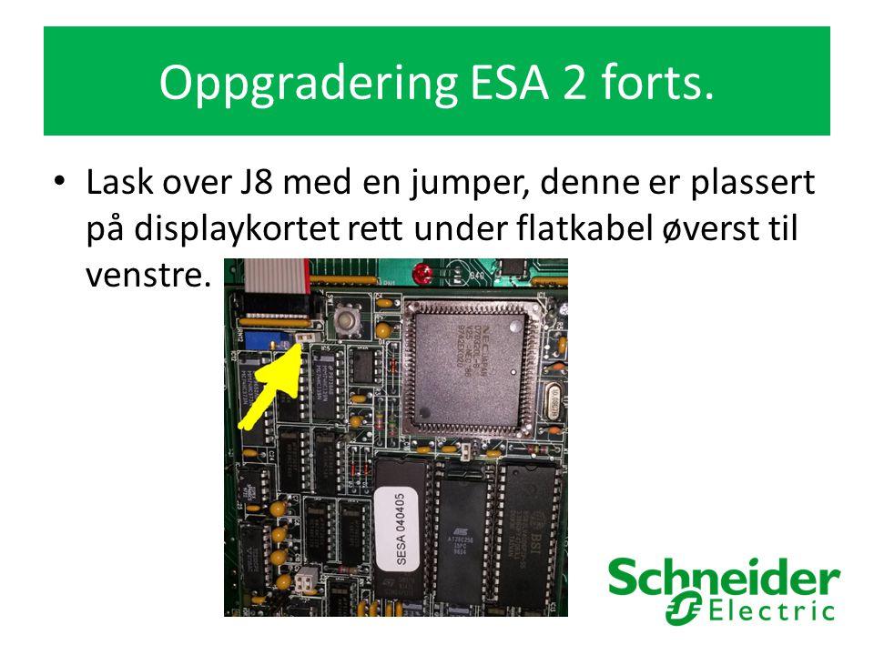 Lask over J8 med en jumper, denne er plassert på displaykortet rett under flatkabel øverst til venstre.