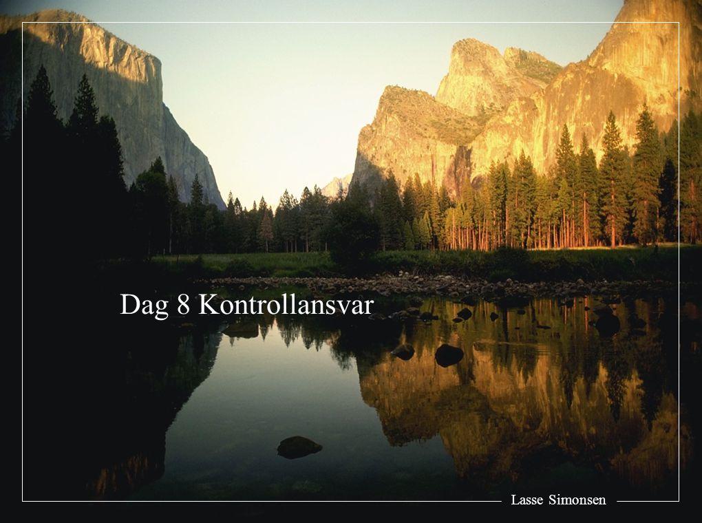 Lasse Simonsen Dag 8 Kontrollansvar