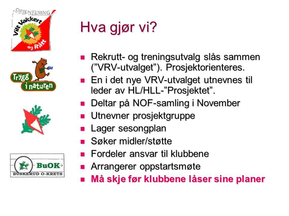 Hva gjør vi. Rekrutt- og treningsutvalg slås sammen ( VRV-utvalget ).