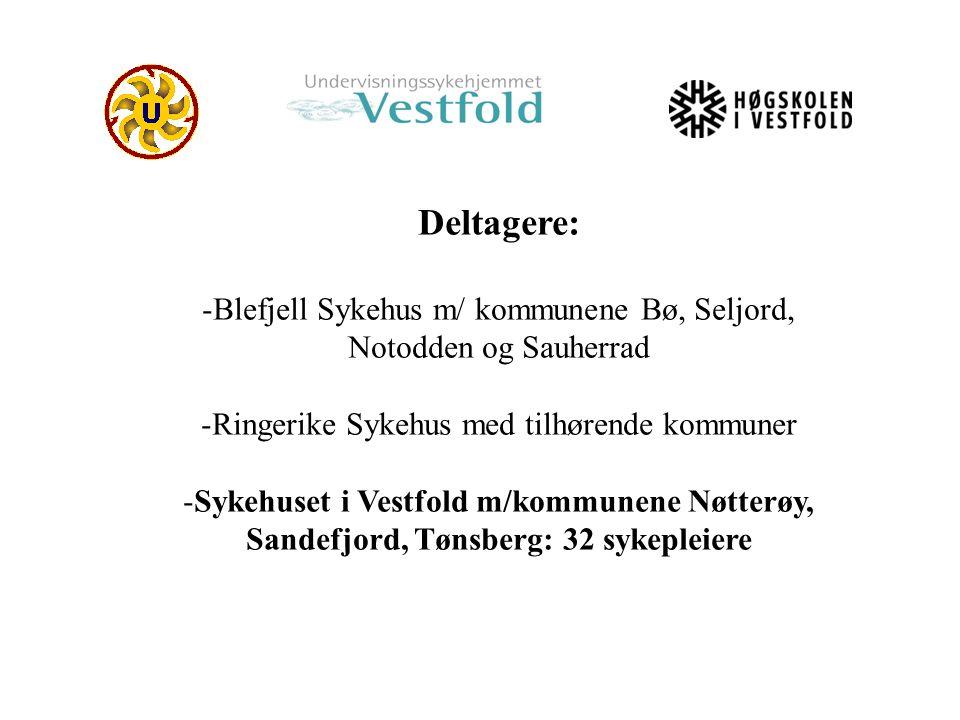 Deltagere: -Blefjell Sykehus m/ kommunene Bø, Seljord, Notodden og Sauherrad -Ringerike Sykehus med tilhørende kommuner -Sykehuset i Vestfold m/kommun