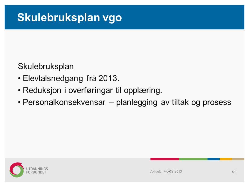 Skulebruksplan Elevtalsnedgang frå 2013. Reduksjon i overføringar til opplæring.