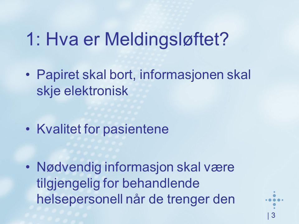 | 3 1: Hva er Meldingsløftet? Papiret skal bort, informasjonen skal skje elektronisk Kvalitet for pasientene Nødvendig informasjon skal være tilgjenge