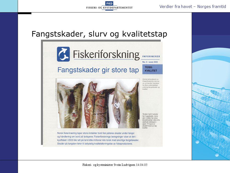 Verdier fra havet – Norges framtid Fiskeri- og kystminister Svein Ludvigsen 14.04.05 Fangstskader, slurv og kvalitetstap