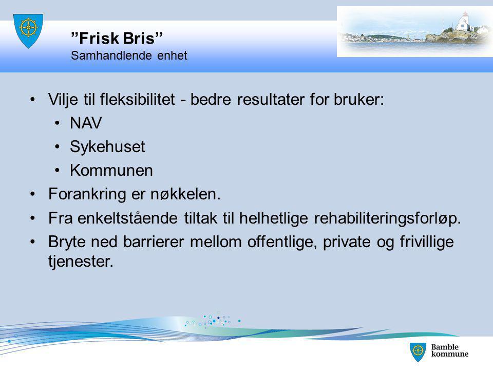 Bamble Kommune, STHF, og NAV 2009 – 2010 Satt i drift 01.01.2011 Fokus på det som virker