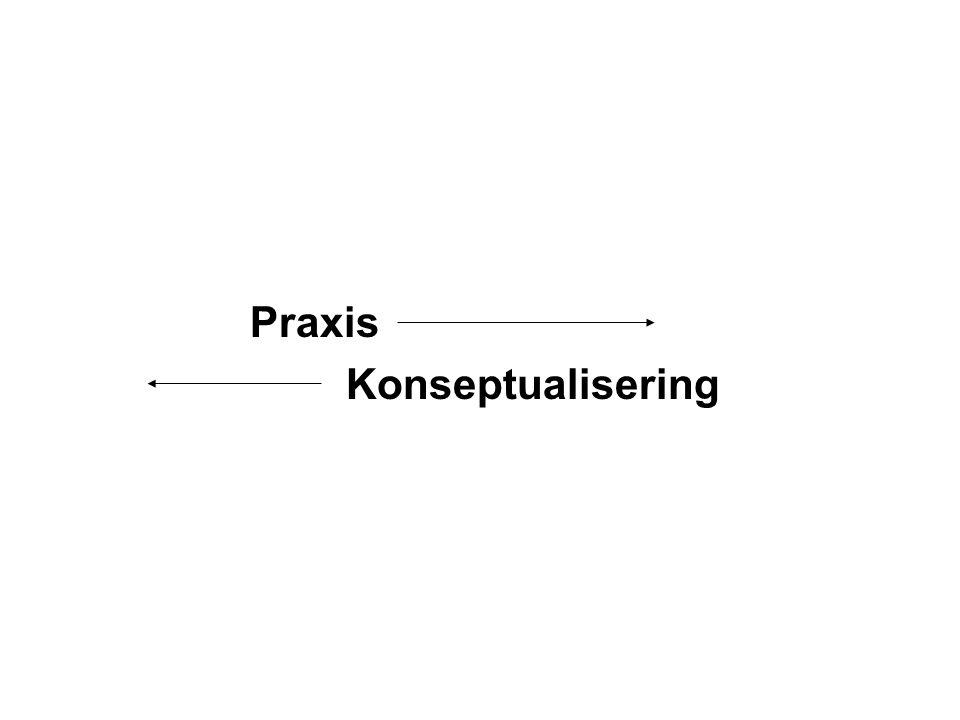 Praxis Konseptualisering