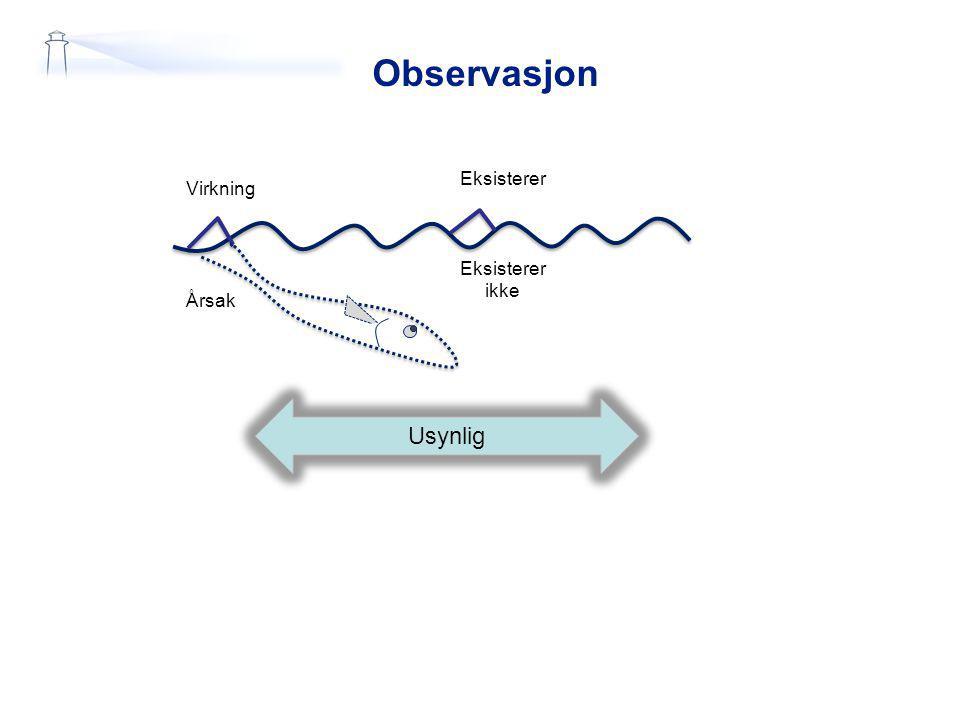 Observasjon Virkning Årsak Eksisterer Eksisterer ikke Usynlig