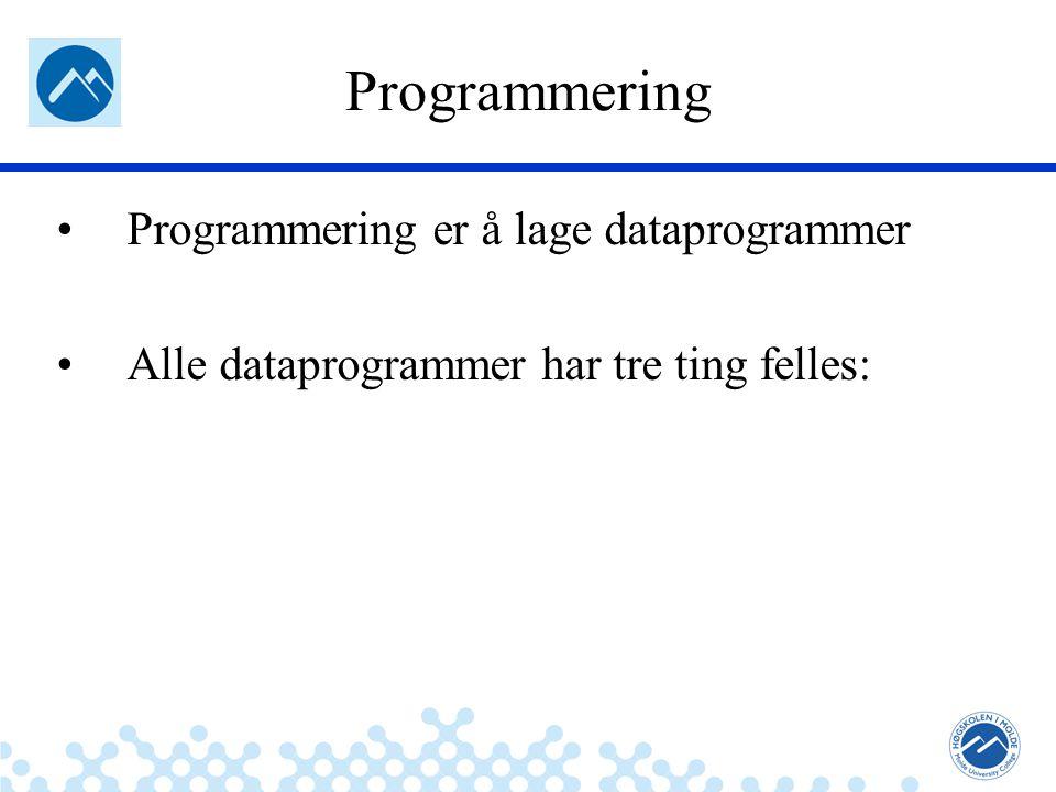 Jæger: Robuste og sikre systemer Programmering Programmering er å lage dataprogrammer Alle dataprogrammer har tre ting felles: