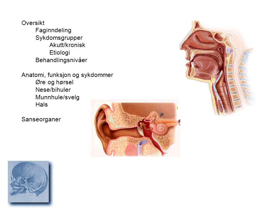 Oversikt Faginndeling Sykdomsgrupper Akutt/kronisk Etiologi Behandlingsnivåer Anatomi, funksjon og sykdommer Øre og hørsel Nese/bihuler Munnhule/svelg