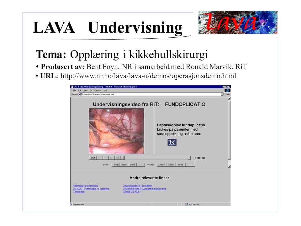 LAVA Undervisning Tema: Opplæring i kikkehullskirurgi Produsert av: Bent Foyn, NR i samarbeid med Ronald Mårvik, RiT URL: http://www.nr.no/lava/lava-u/demos/operasjonsdemo.html
