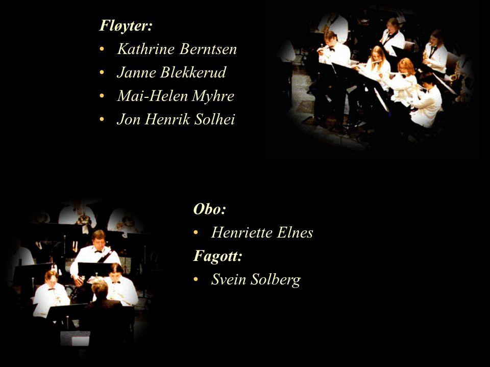 Fløyter: Kathrine Berntsen Janne Blekkerud Mai-Helen Myhre Jon Henrik Solhei Obo: Henriette Elnes Fagott: Svein Solberg
