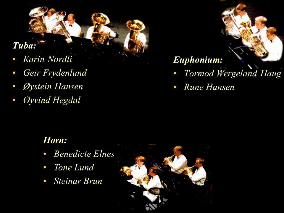 Tuba: Karin Nordli Geir Frydenlund Øystein Hansen Øyvind Hegdal Euphonium: Tormod Wergeland Haug Rune Hansen Horn: Benedicte Elnes Tone Lund Steinar Brun