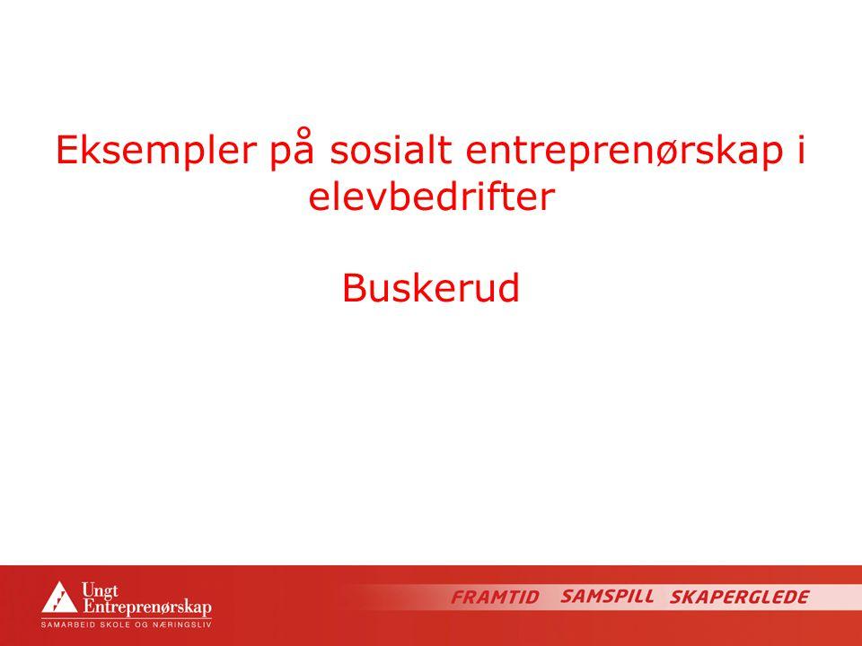 Eksempler på sosialt entreprenørskap i elevbedrifter Buskerud